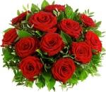 trandafiri multi rosii