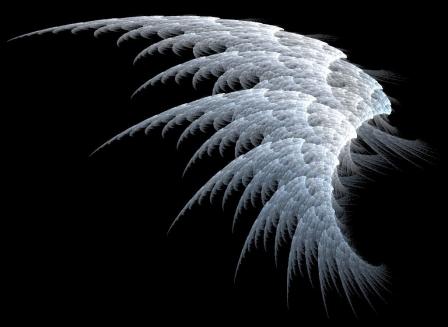 aripa-unui-inger